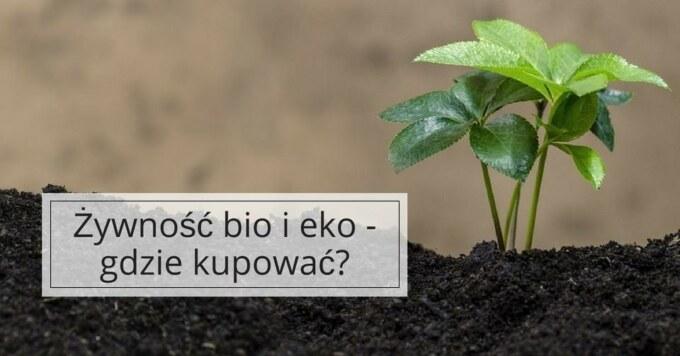 Żywność ekologiczna - gdzie lupić?