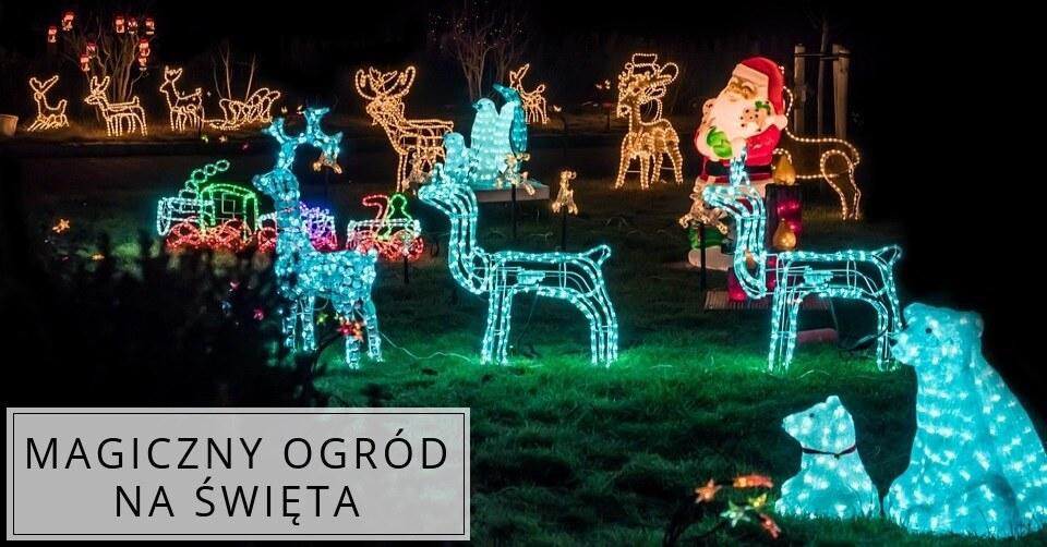 Magia świąt w ogrodzie!