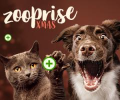XMAS z Zooplus!